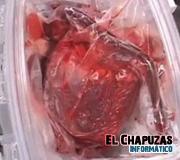 Nuevo método para mantener vivo un corazón fuera del cuerpo