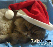 Logo Mascota El Chapuzas Informático