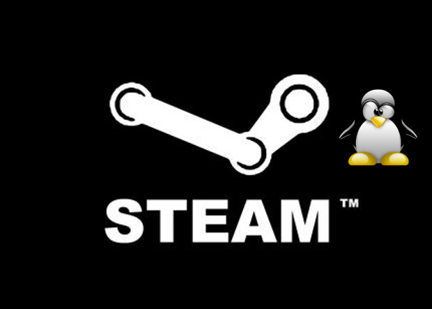 Steam podría llegar a Linux en unos meses