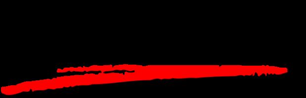 Hauppauge Logo 619x200 0