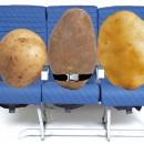 Boing prueba el efecto de la WiFi en vuelos cambiando humanos por patatas