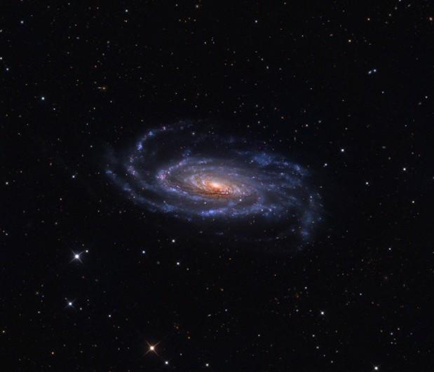 Galaxia NGC 5033