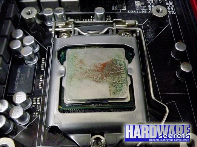 A falta de pasta térmica usa Mayonesa en tu CPU Mayonesa-Hellman-Pasta-t%C3%A9rmica-3