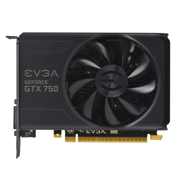 EVGA GeForce GTX 750 2 GB (1)