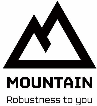 Logo Mountain 2013