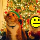 ¡Os deseamos un Feliz 2015!