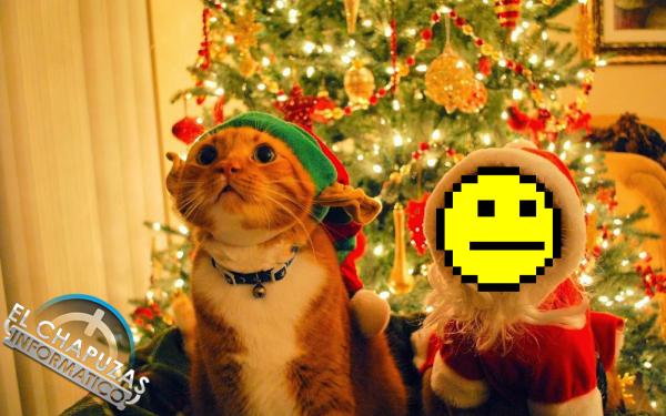 Chapuzas Navidad 2014