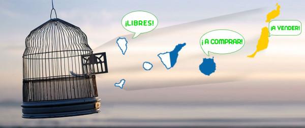 Canarias DUA