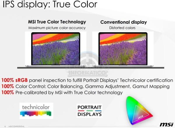 MSI IPS True Color