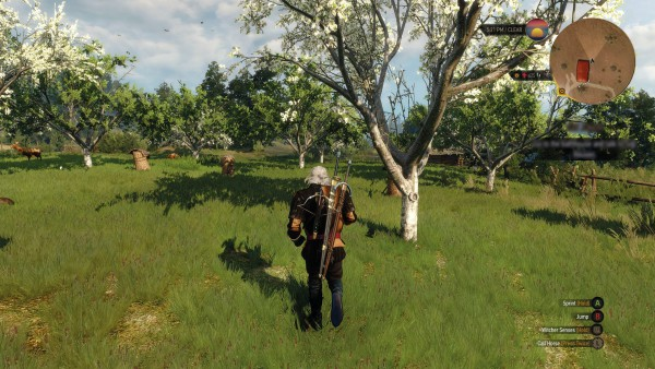The Witcher 3 Wild Hunt screenshot (1)