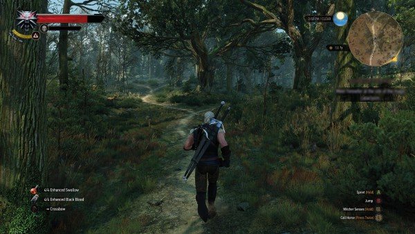 The Witcher 3 Wild Hunt screenshot (3)