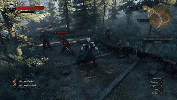 The Witcher 3 Wild Hunt screenshot (4)
