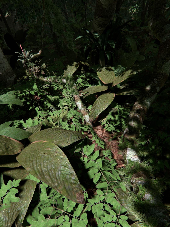 Unreal Engine 4 Realistic Rainforest techuser2