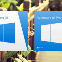 Windows 10 caja