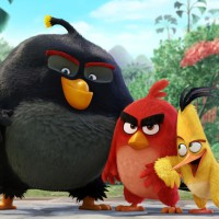 Angry Birds: La Película ya tiene su tráiler de estreno