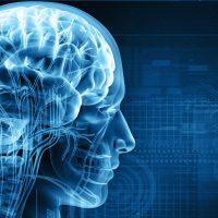 Chips de memoria implantados en el cerebro para recuperar recuerdos