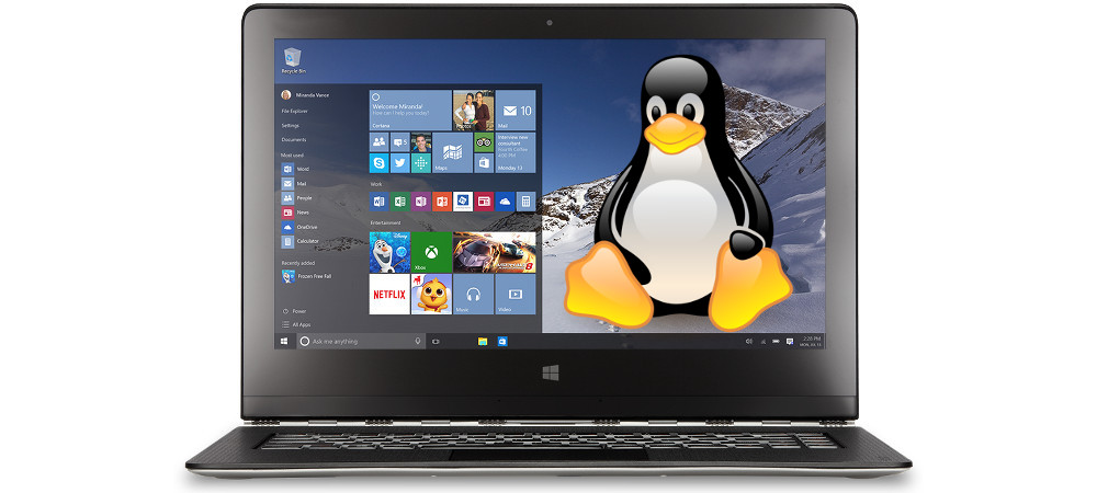 portatil-windows-linux