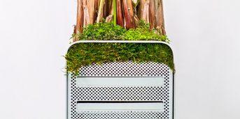 plant_your_mac-portada