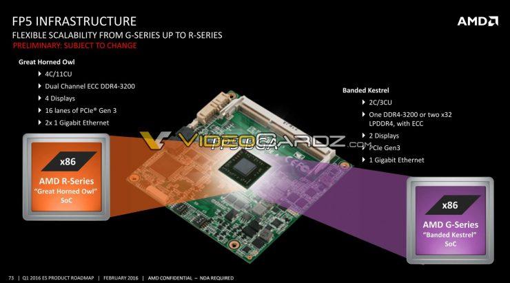AMD Great Horned Owl 2 740x411 8