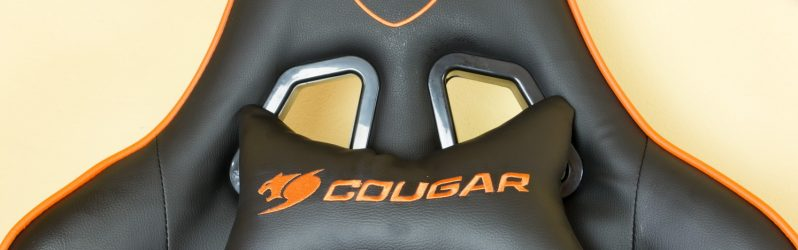 Review: Cougar Armor