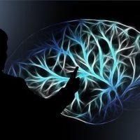 Nectome, una startup que promete crear una copia digital de tu cerebro