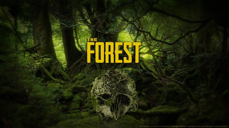 The Forest 740x416 0