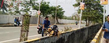 Un ingeniero modifica su dron para salvar la vida de un cachorro