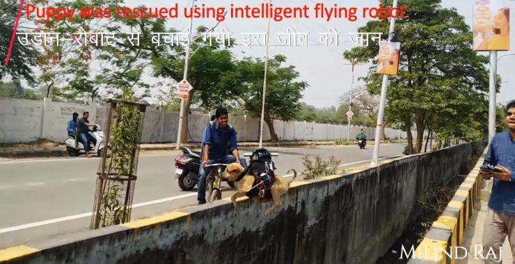 Rescate perro dron 740x379 0