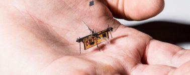 Crean un minúsculo insecto robot capaz de volar sin batería ni cables