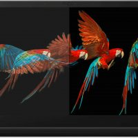 VESA anuncia su nuevo estándar DisplayHDR True Black para pantallas OLED