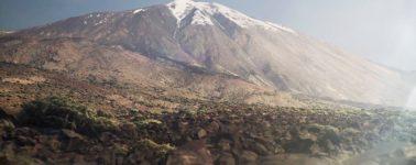 Embark muestra un entorno ultrarrealista desarrollado con el Unreal Engine 4