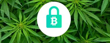La policía australiana confunde una granja de minería de criptomonedas con una plantación de marihuana