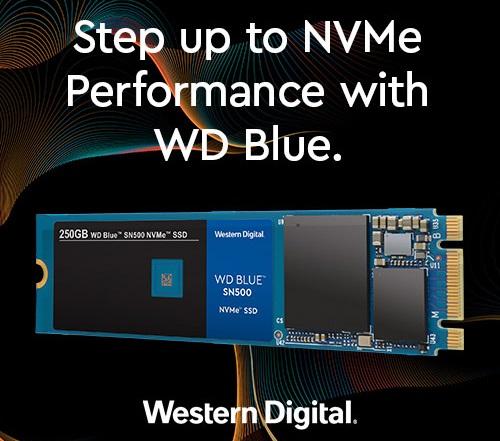 WD Blue SN500 0