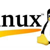 Linux 5.9 ya tiene soporte para las GPUs AMD RDNA2 o la Intel Xe DG1
