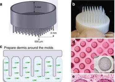 Impresión 3D folículos de pelo