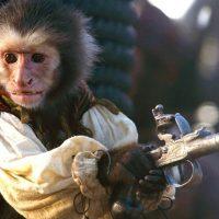Un científico español está creando híbridos entre humanos y monos en China