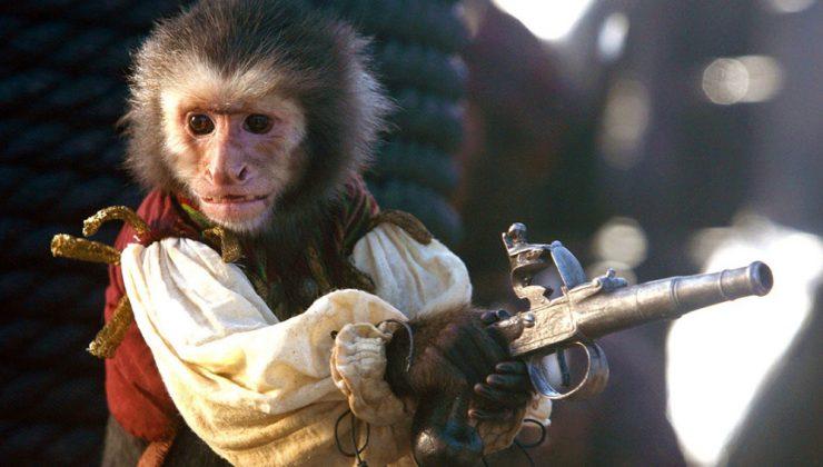 Mono de Piratas del Caribe empuñando un arma de fuego, pistola