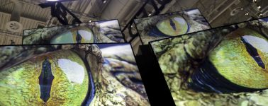 Los televisores Samsung QLED 8K de 2020 incluirán sintonizadores ATSC 3.0