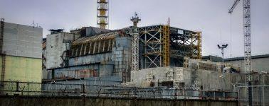La radiactividad de Chernóbil se está limpiando gracias a los champiñones