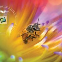 OmniVision OV64C: Sensor de 64 megapíxeles para capturar vídeo 8K en tu smartphone