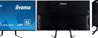 iiyama ProLite X4372UHSU: 43 pulgadas 4K @ 60 FPS a un precio de 490 euros