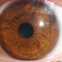 Samsung planea desarrollar un sensor fotográfico de 600MP, mayor resolución que el ojo humano