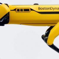 Boston Dynamics comienza a vender su robot Spot a un precio de 74.500 dólares