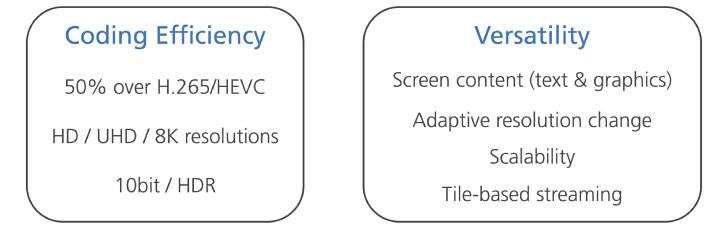 Versatile Video Codec