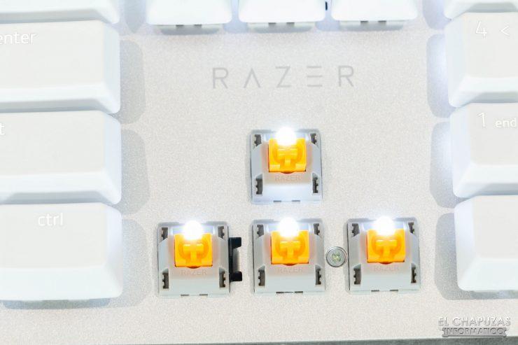 Razer Pro Type 4